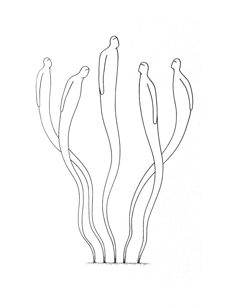 Sans-titre (Bouquet2)