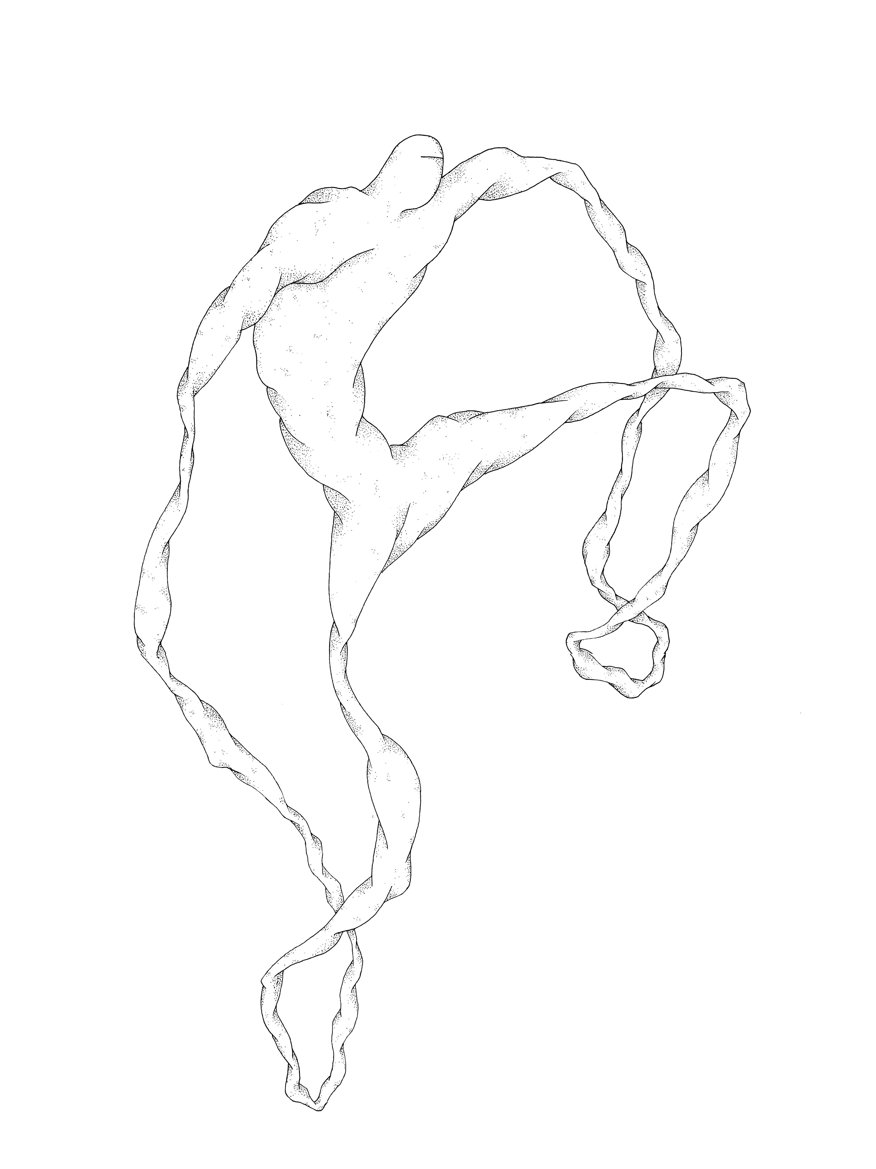 Sans titre (mutant poings et pieds liés) ORIGINAUX copie
