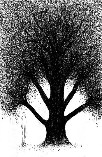 l'arbre à soi copie2